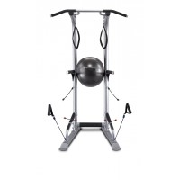 Bodycraft LT3 - T3 Life Tree Total Training Tower